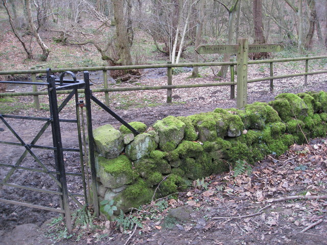 Entering Woodland - Gate and Signpost View