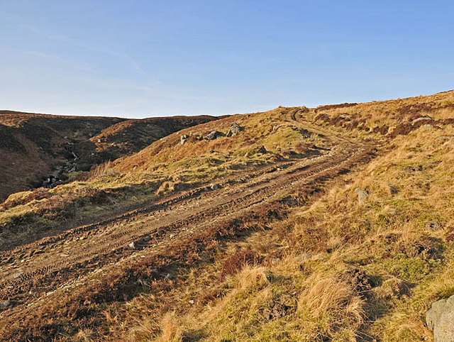 Hill Track above Carroglen