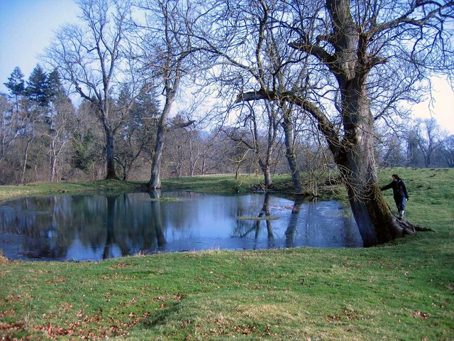 Pond near St Peter's Church, Newbrough
