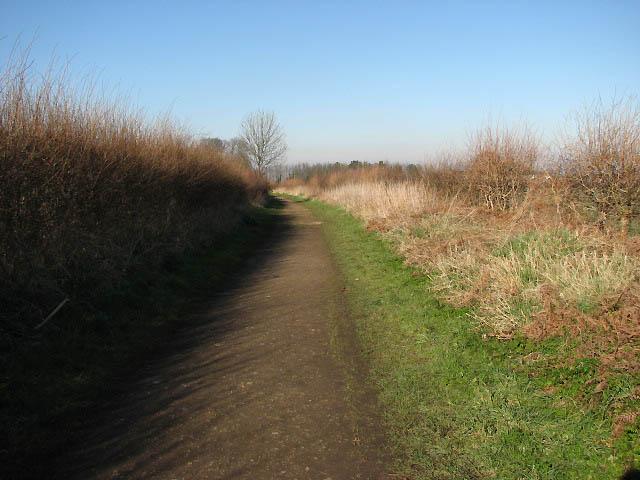 Path leading south