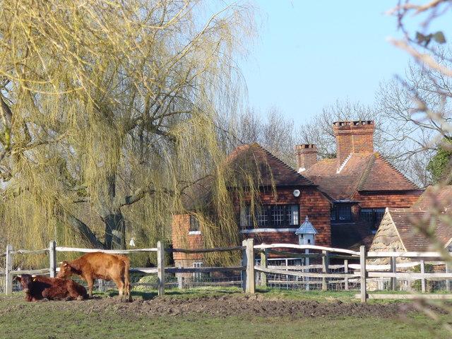Rural East Clandon