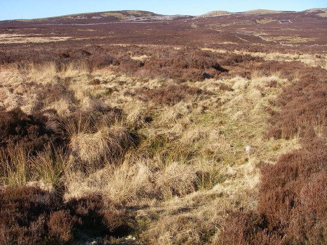 Shakehole-infested moorland on Beacons Way