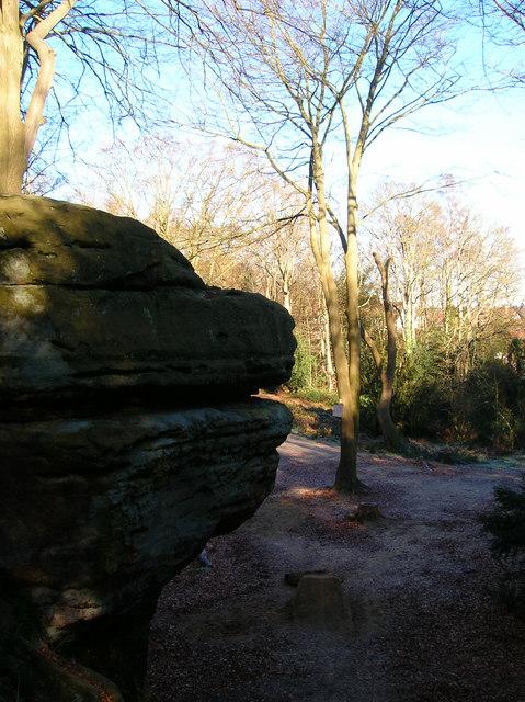 Rock Outcrop, Bull's Hollow