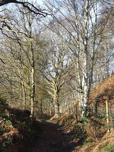 Bridleway up Abbot's Castle Hill, Shropshire