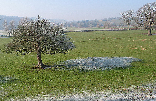 Frost in the shadow