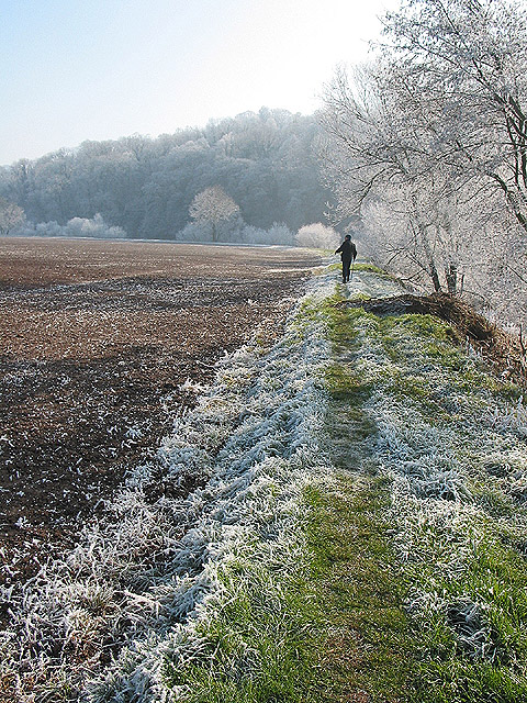 Walking on a frosty morning