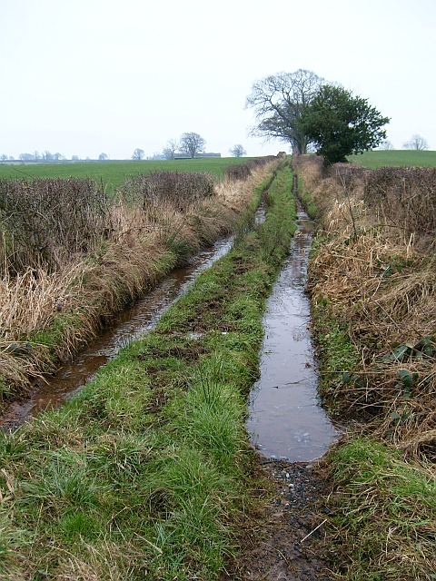 Waterlogged bridleway to Laversdale