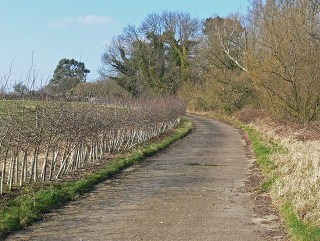 Narrow lane south of Burrough on the Hill