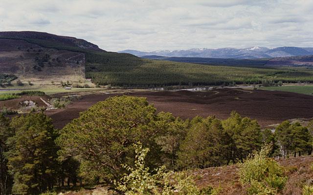 Moorland near Achlean
