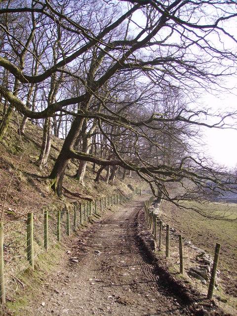 Approaching Low Borrowdale