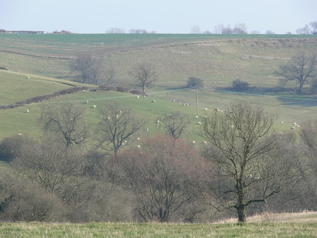 Countryside between Burrough on the Hill and Somerby