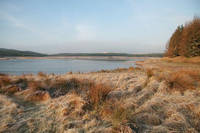 Kingside Loch