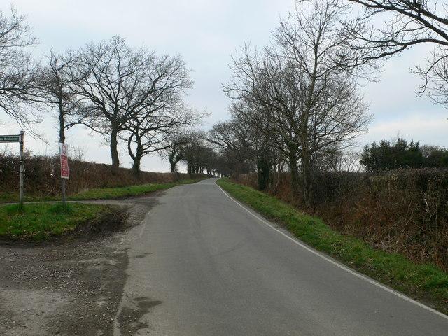 Rose Lane, Buckley