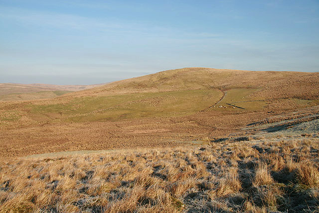 Rough grazing on Kirk Hill