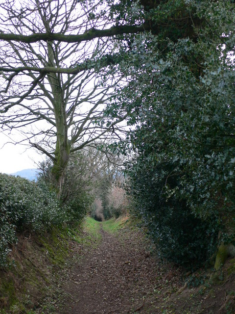 Bridleway to Llong