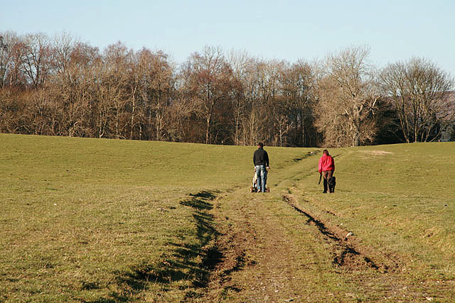 Walkers on Murieston Hill