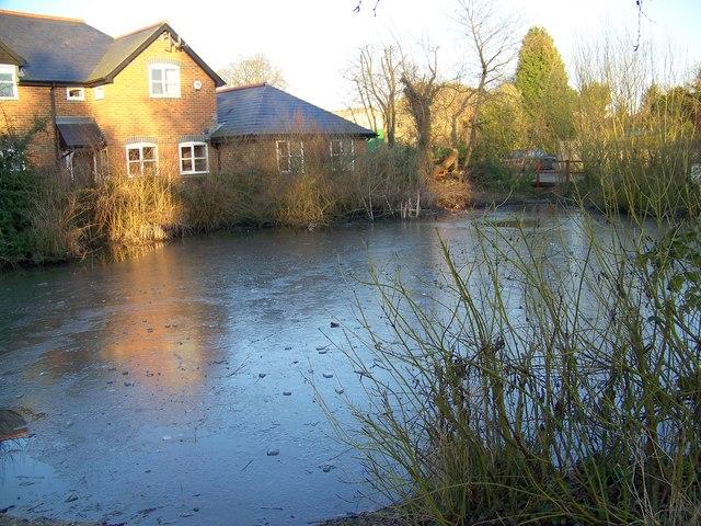 Village Pond, Cliddesden