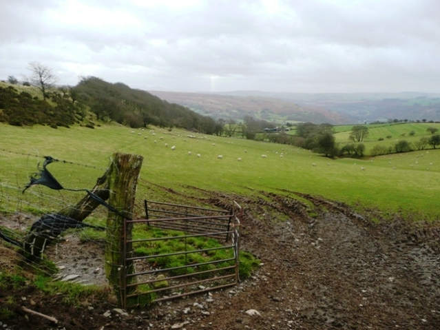 Descent towards Aberedw