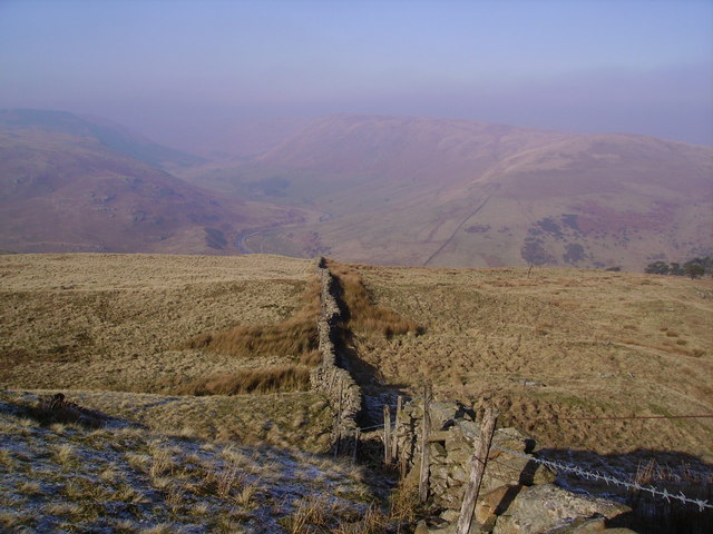 Wall, Grayrigg Forest