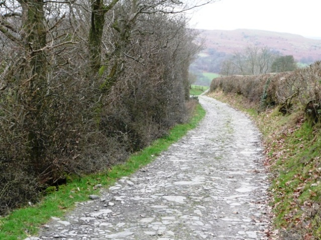 Lane towards Aberedw
