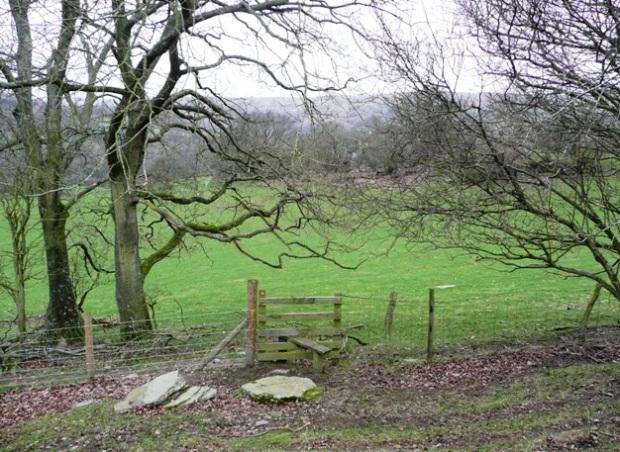Footpath to Aberedw