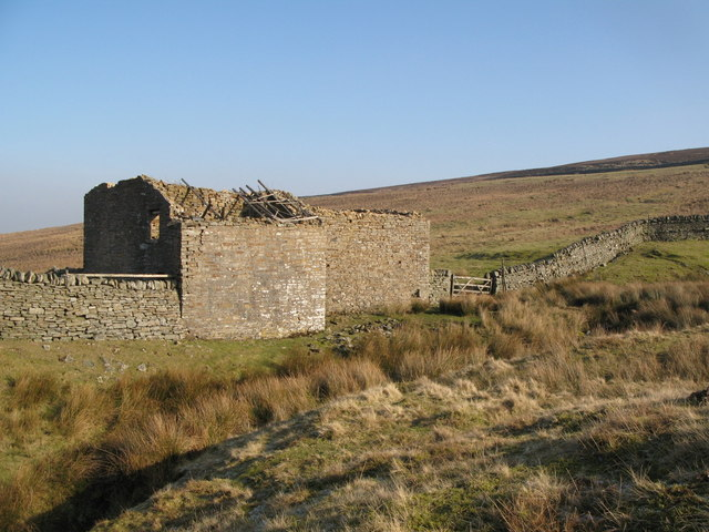 Ruined cottage, Western Meadows (3)