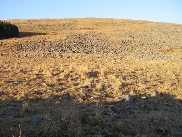 Boulder field on Fan Gyhirych