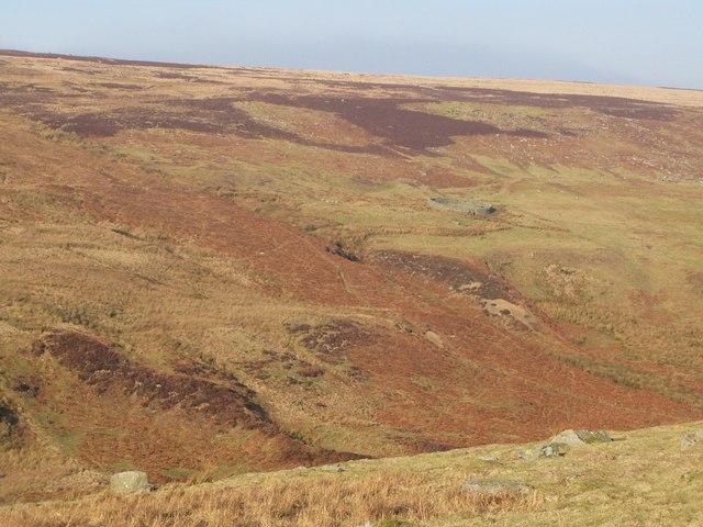 Sheepfold on Riddlehamhope Fell