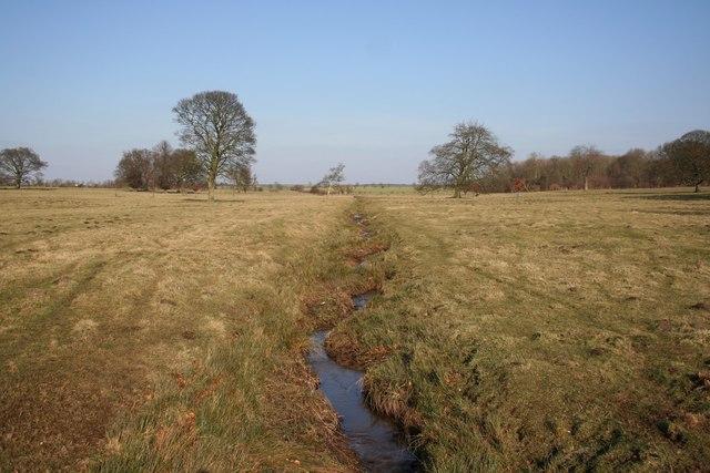 Scrivelsby park stream