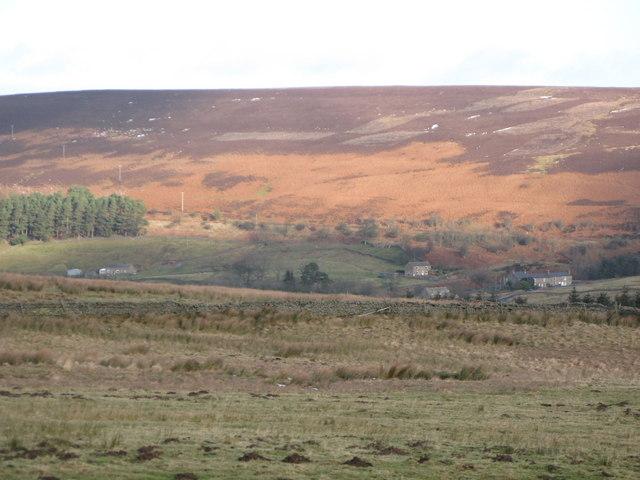 Moorland and pastures above Swinhope Shield