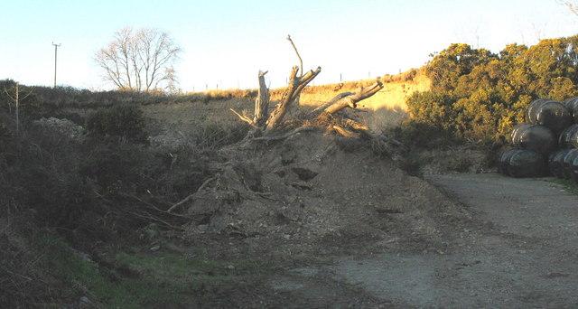 A roadside gravel pit