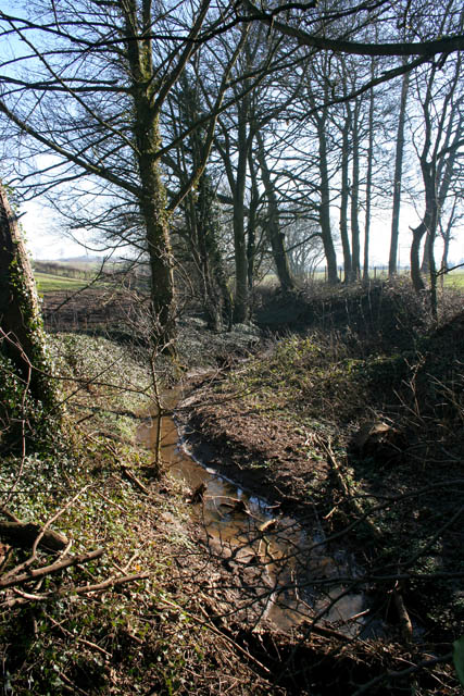 Looking up stream from Green Lane