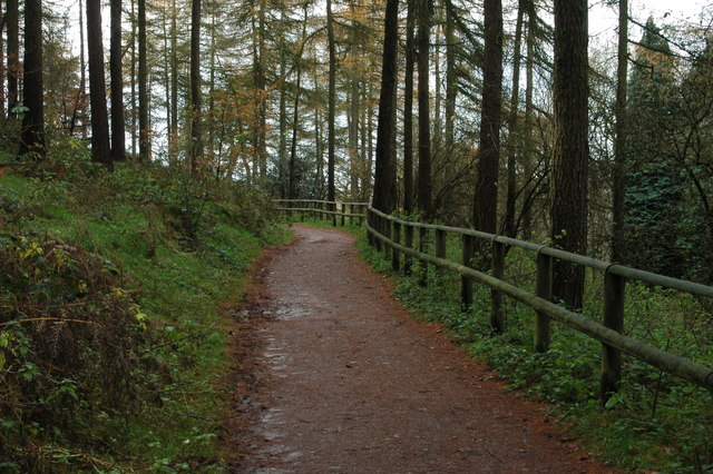 Path from the Visitor Centre
