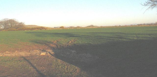 Farmland north of the Llwyndyrys road