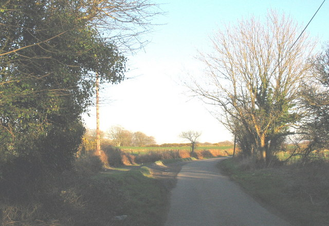 Passing place at a sharp bend in the Llwyndyrys road