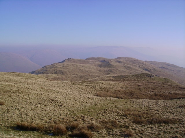 Grayrigg Forest