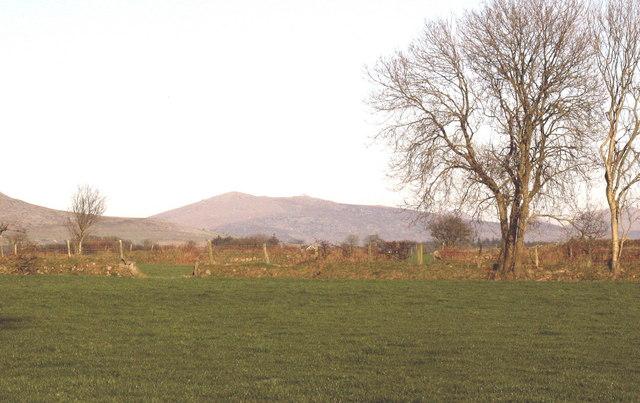 Farmland at Tyddyn Felin Farm