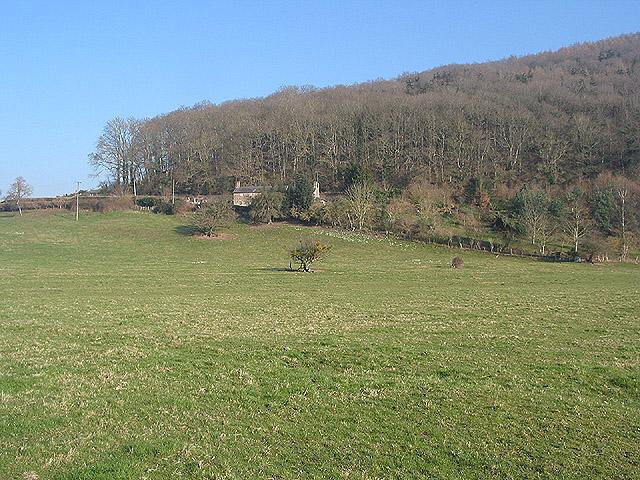 Hillside cottage near Capler Wood