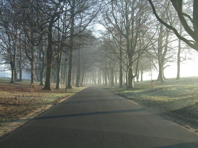 Driveway to Luton Hoo