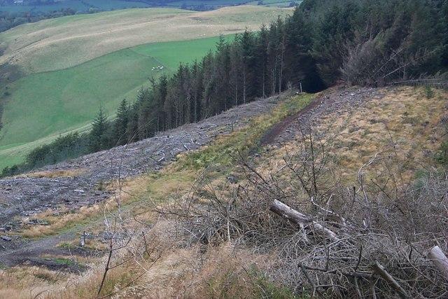 September 2007 - Radnor Forest