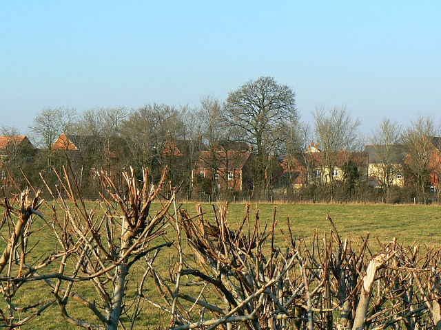 View from Garsington Drive, near Blunsdon St Andrew, Swindon