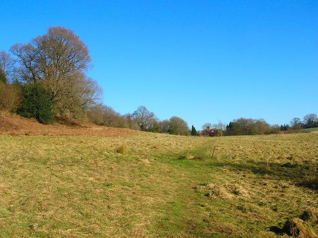 Footpath to Ramslye Farm