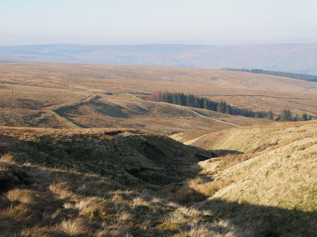 The cleugh of Long Sike (2)