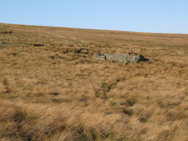 Sheepfold near Jenny Meggy's Sike