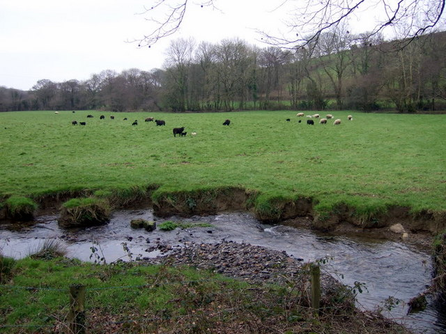 Riverside pasture