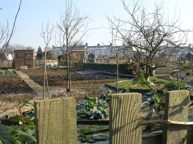 Allotments - off New Road Side
