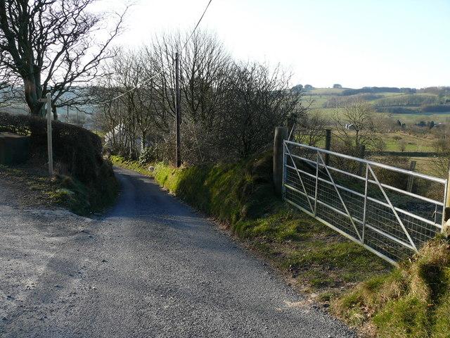 Lon gul ger Bethania / Narrow Lane near Bethania