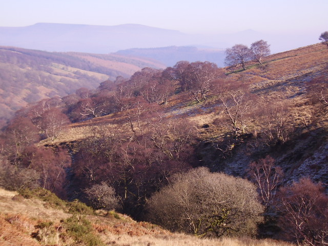 The ravine of Nant y Llestri
