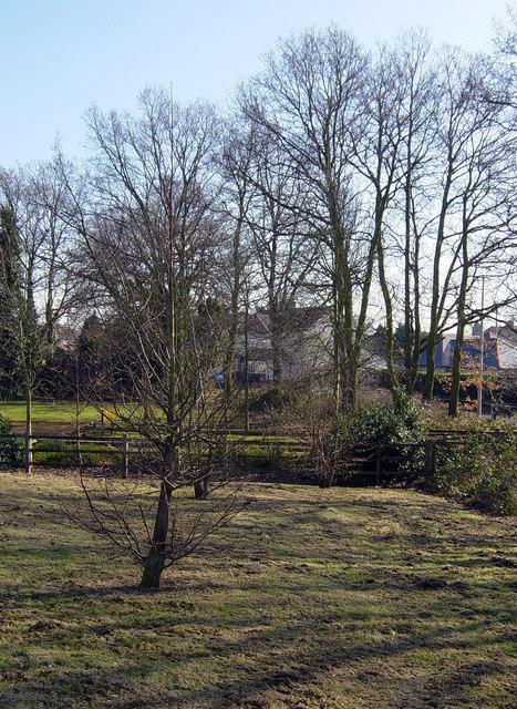 Crabtree Park