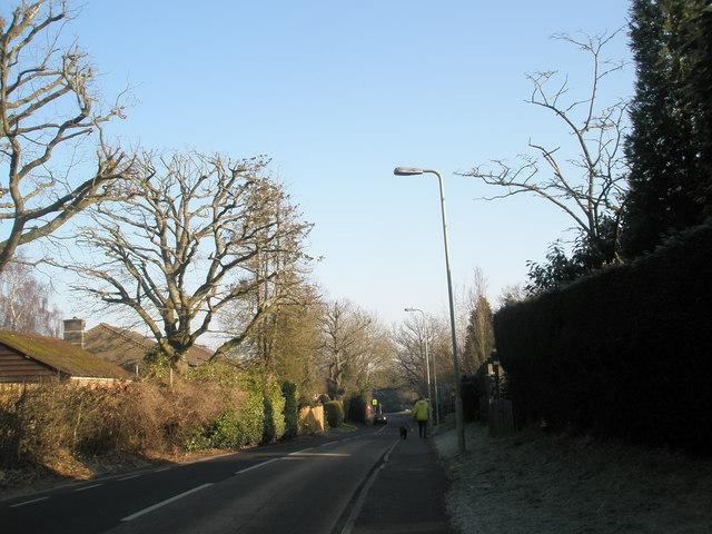Pulens Lane, Petersfield